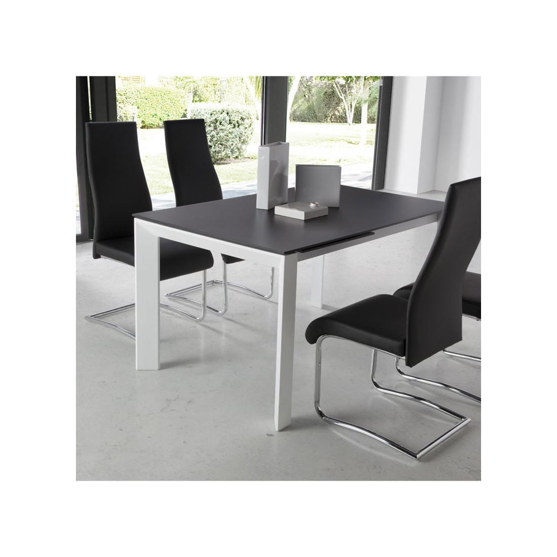 table de repas allonge plateau verre givr noir mista. Black Bedroom Furniture Sets. Home Design Ideas